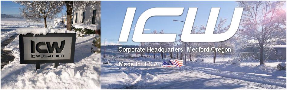 Icwusa Com Inc